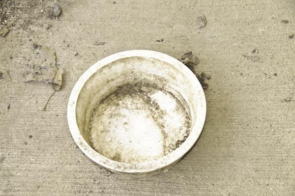 10-4-14-bowl