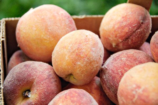 10-7-28-peach2