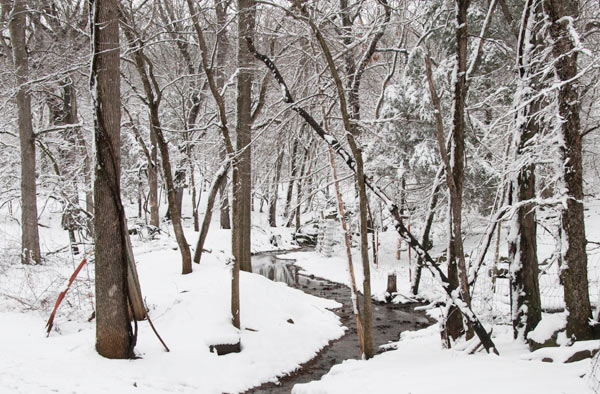 snow along the creek